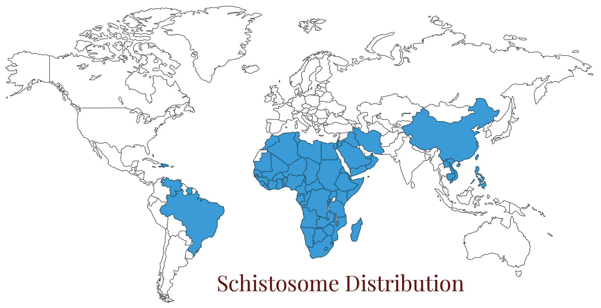 World map schistomiasis