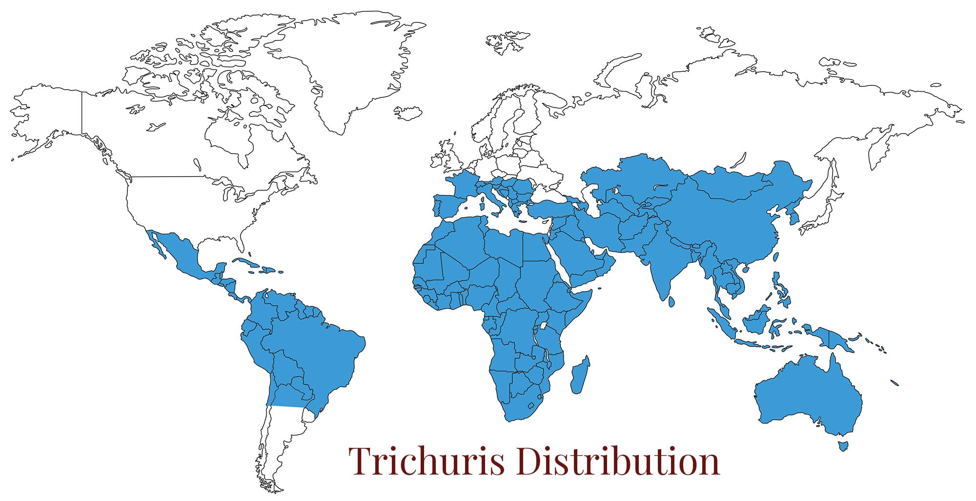 World map trichuriasis
